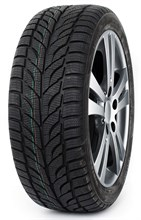 Paxaro Winter 195/65R15 91 T